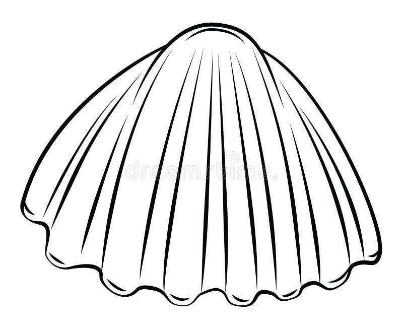 Shell. Eps 10 illustration Design vector illustration