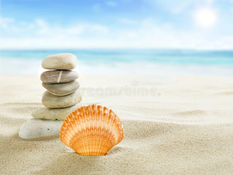 Shell et pierres sur la plage photo stock