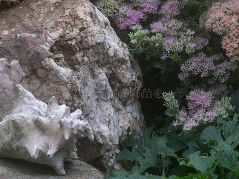 Shell and Fractured Rock With Green Leaves royalty free stock photo