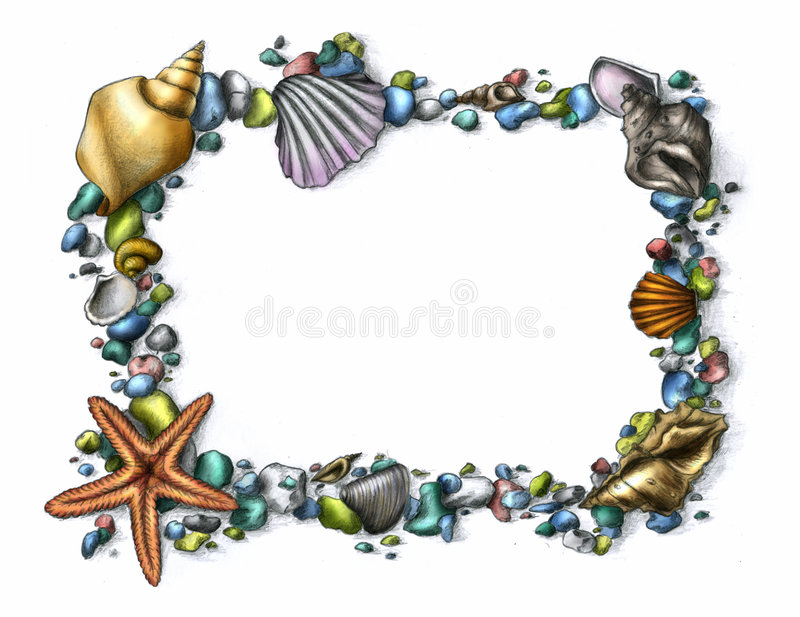 Download Shell frame stock illustration. Image of mollusc, starfish - 7524286