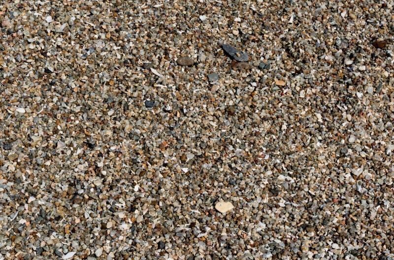 Shell i otoczaka kamień dla tło tekstury zdjęcia stock