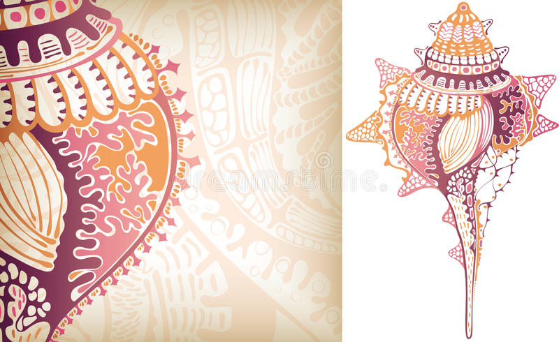 Shell Kroonslak royalty-vrije illustratie