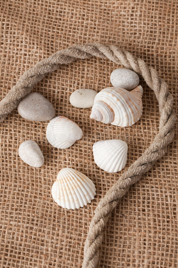Free Shell Laing On Jute Royalty Free Stock Image - 12247906