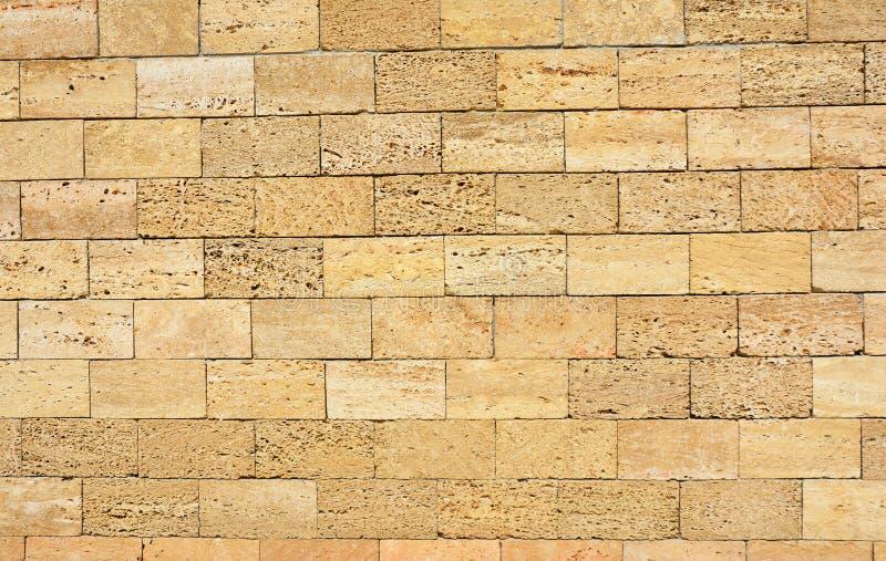 Shell limestone wall texture background. Photo stock photos