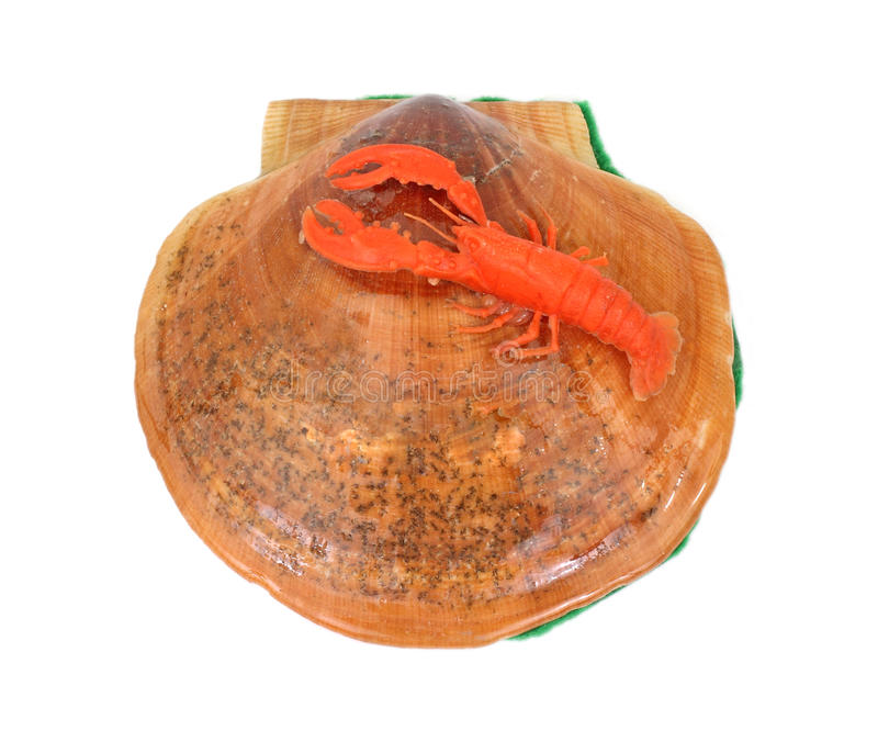Shell with Lobster Souvenir Overhead View