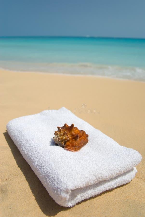 Shell met handdoek op strand. royalty-vrije stock afbeelding