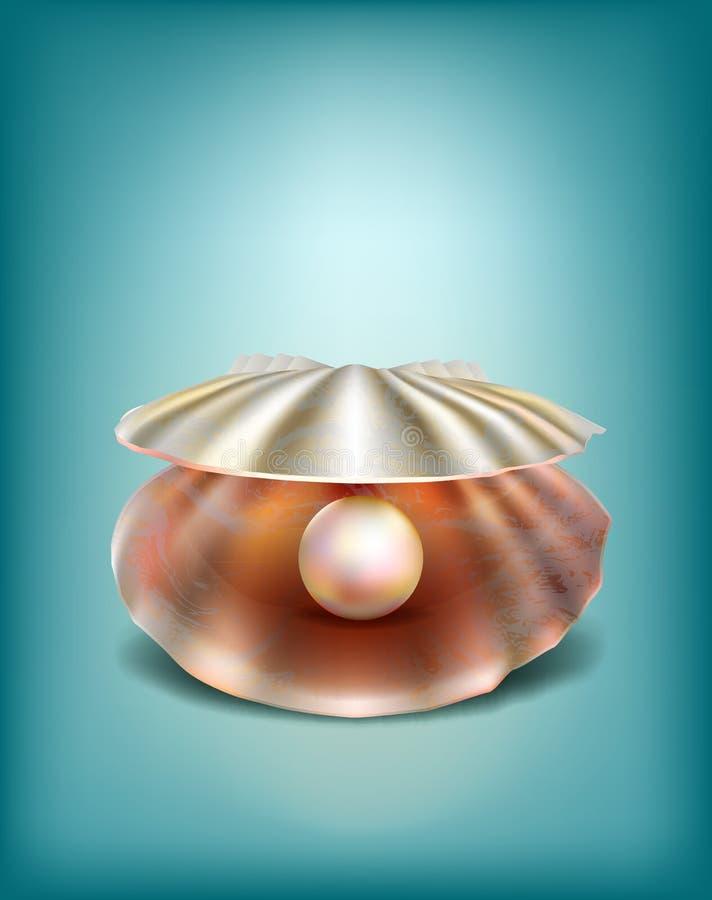 Shell mit einer Perle lizenzfreie abbildung