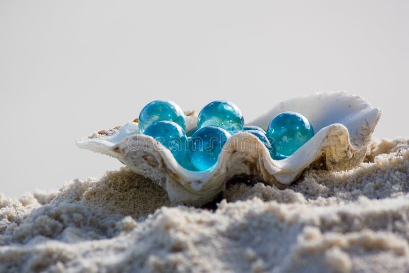 Shell mit Glaskieseln auf Sand lizenzfreie stockfotografie