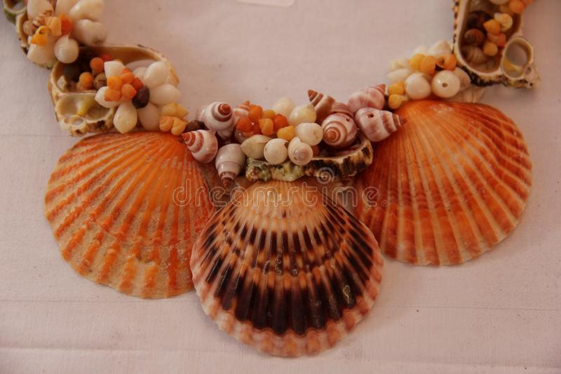 Shell Necklace foto de stock royalty free
