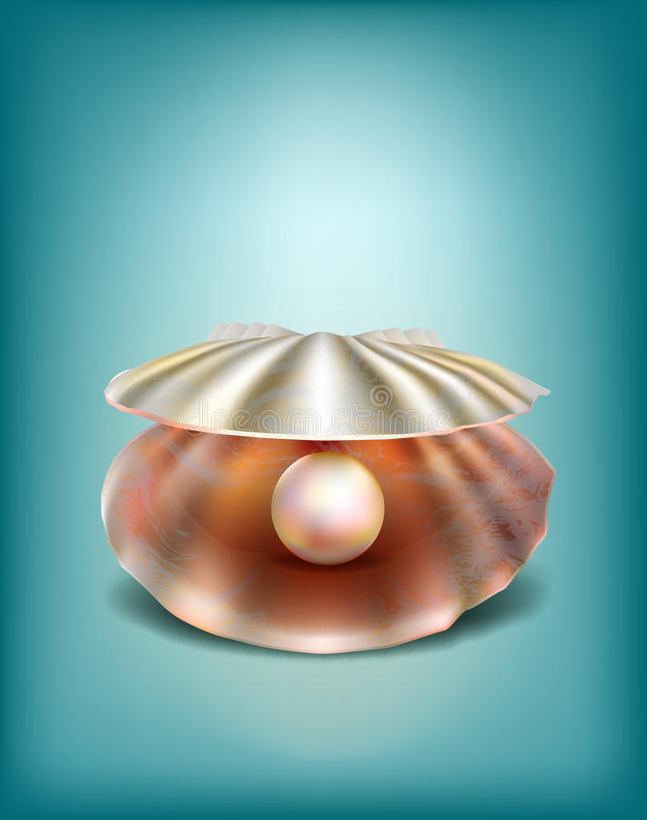 Shell with a pearl royalty free illustration