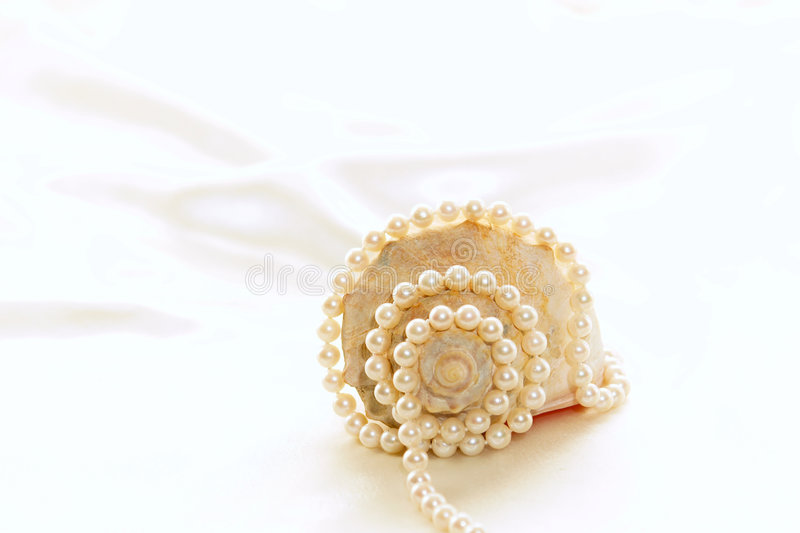 Download Shell and pearls stock image. Image of conch, pink, pretty - 2848323