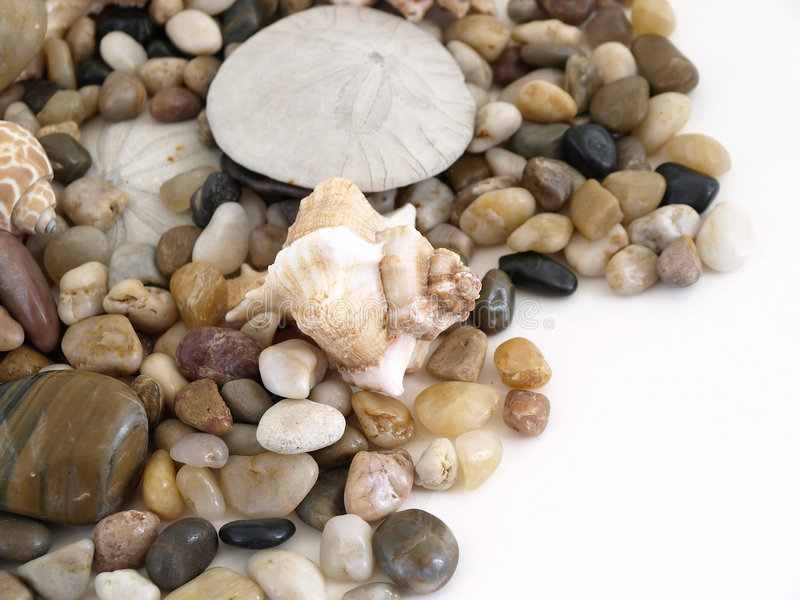Shell and Pebble for Text stock images