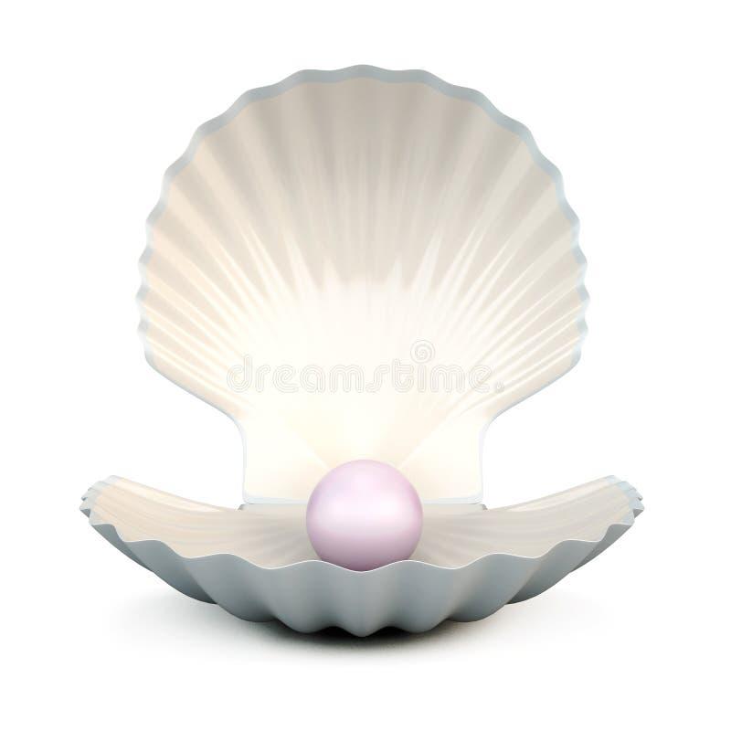 Shell perlent sur un blanc illustration de vecteur