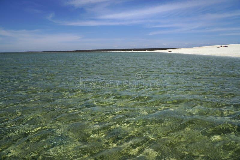 Shell plaży zachodnia australia fotografia stock