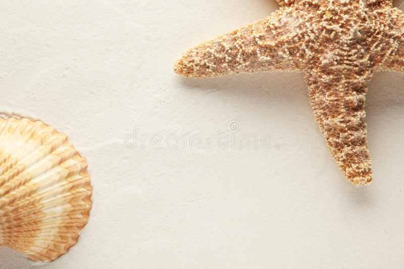 Download Shell and starfish stock photo. Image of exotic, outdoor - 14823704