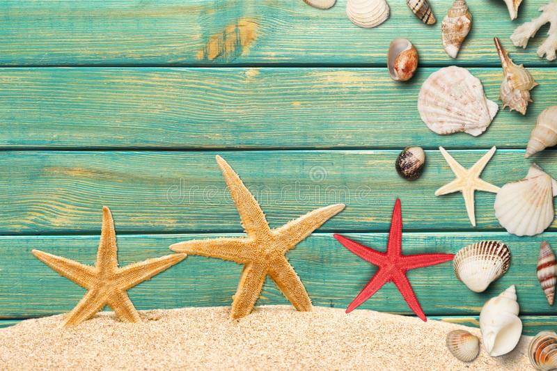 Shell and starfish on desk royalty free stock image