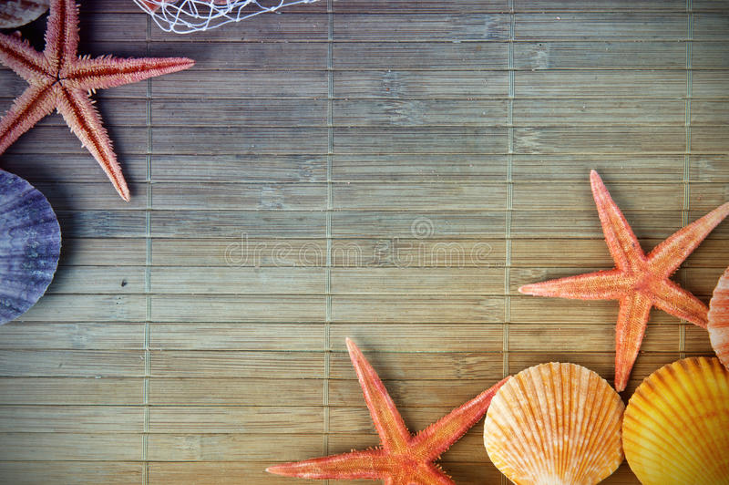 Download Shell and starfish frame stock photo. Image of travel - 22729348