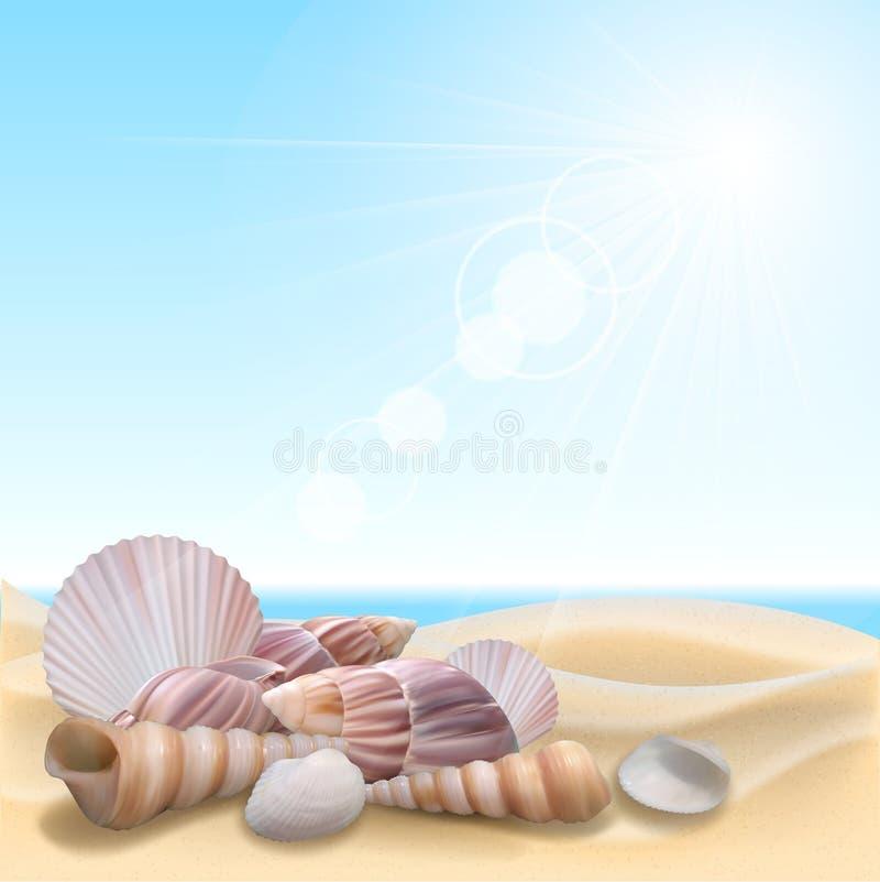 Shell sulla spiaggia illustrazione vettoriale