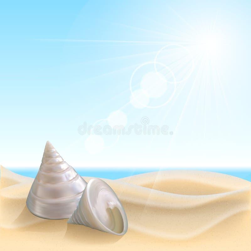Shell sur la plage illustration libre de droits