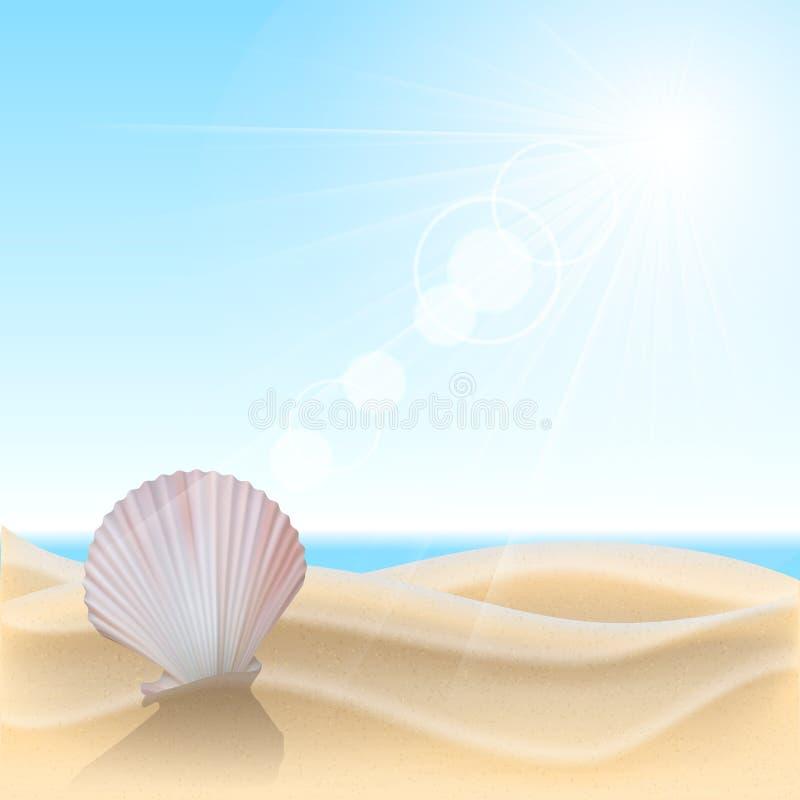 Shell sur la plage illustration stock