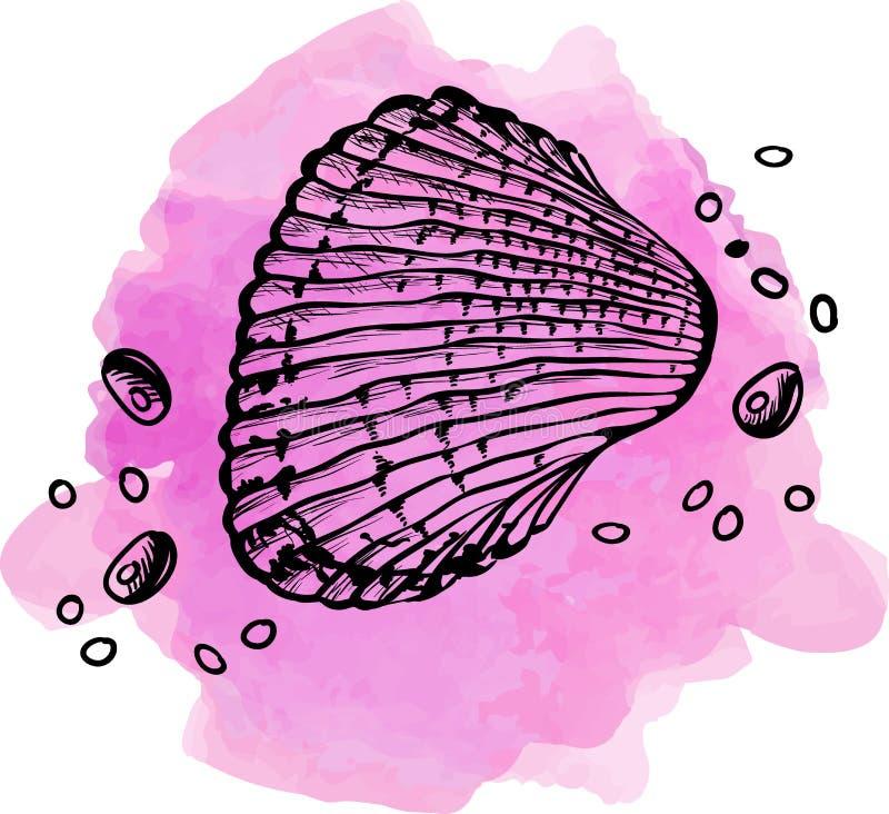 Shell sur le rose - illustration illustration de vecteur