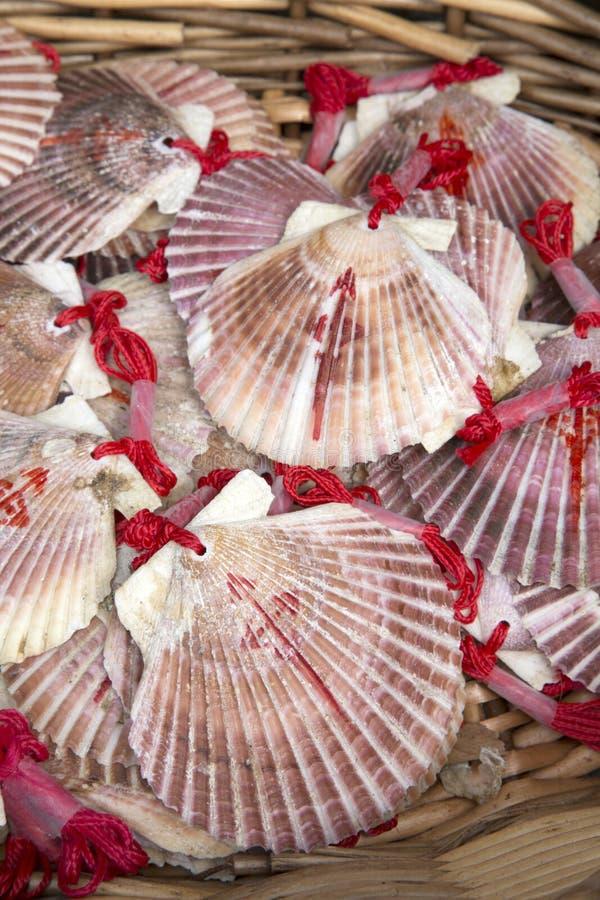 Shell Symbol av Camino de Santiago Galicia; Spanien arkivfoto