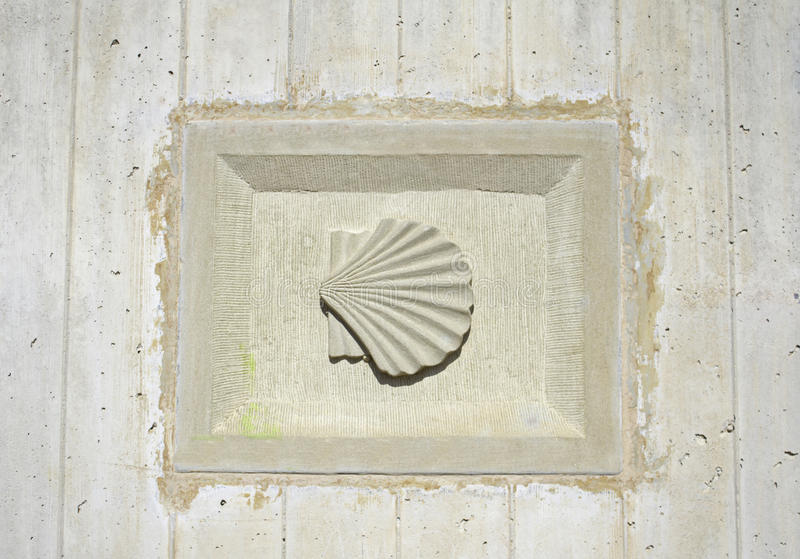 Download Shell symbolic stock image. Image of shell, relief, lines - 30225103