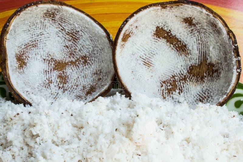 Shell van de kokosnoot stock afbeelding