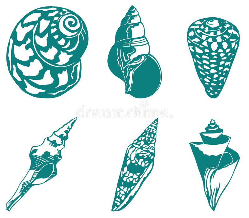 Shell van de trompet vector illustratie