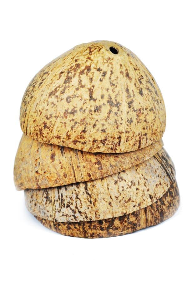 Shell van het kokosnotenfruit royalty-vrije stock afbeelding