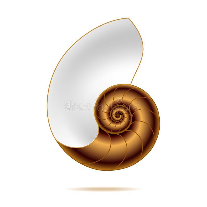 Shell van Nautilus. Vector illustratie. royalty-vrije illustratie