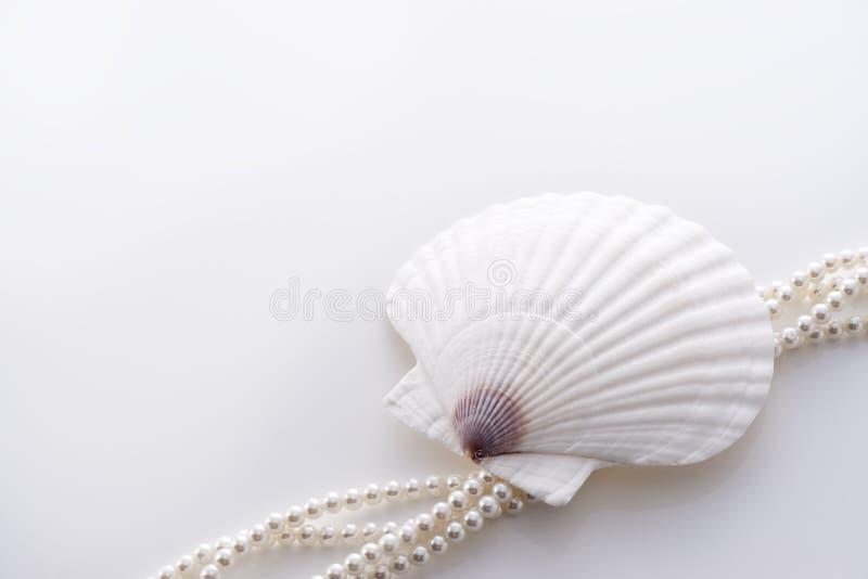 Shell y perla imagenes de archivo