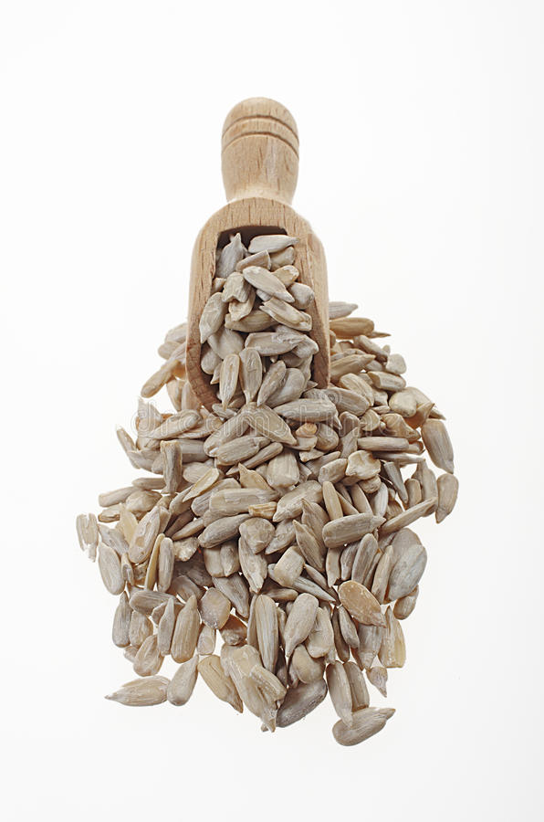 Shelled sunflower seeds with a small wooden spoon. Sunflower seeds are the amazing crop from sunflower. There are really rich in monounsaturated stock photos