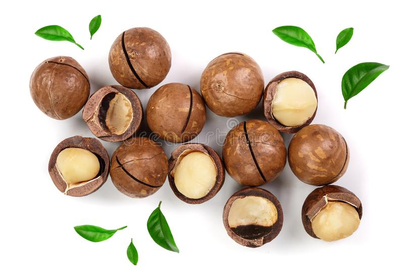 Shelled and unshelled macadamia nuts isolated on white background. Top view. Flat lay pattern.  royalty free stock images