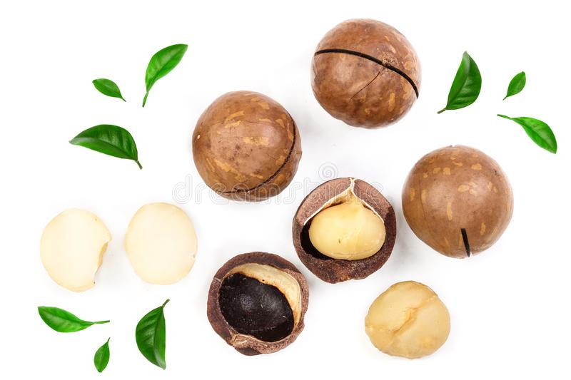 Shelled and unshelled macadamia nuts with leaves isolated on white background. Top view. Flat lay pattern.  royalty free stock photos