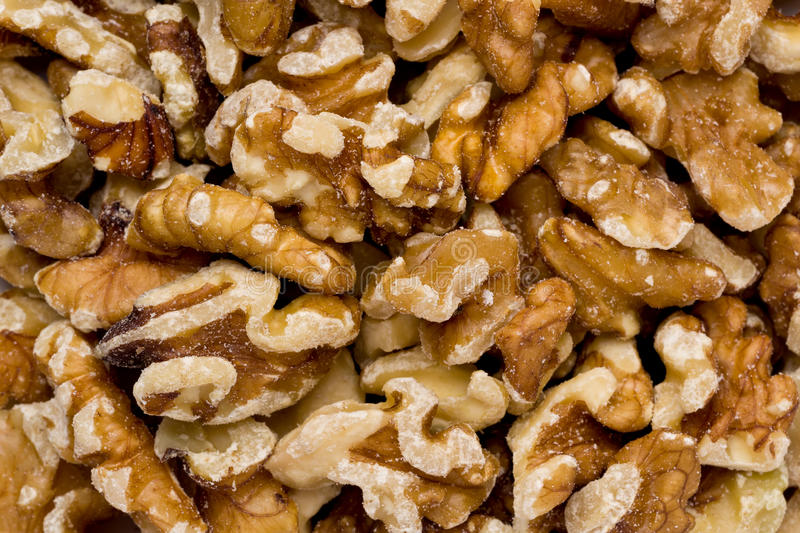 Download Shelled Walnuts stock photo. Image of nuts, healthy, close - 24191848