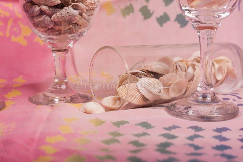 Download Shelles del mar imagen de archivo. Imagen de arena, blanco - 100534579