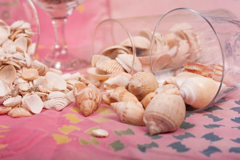 Download Shelles del mar foto de archivo. Imagen de agua, arena - 100534774