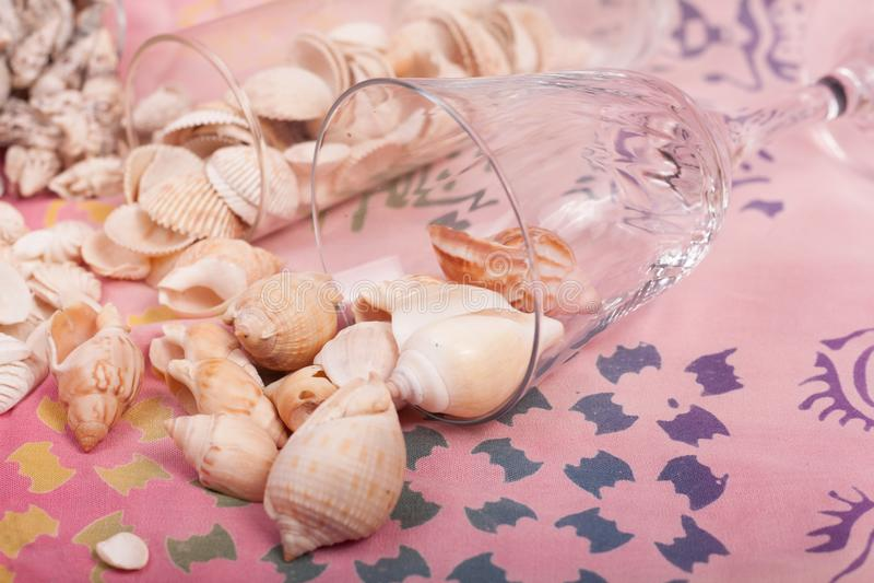 Download Shelles del mar foto de archivo. Imagen de colorido - 100534858