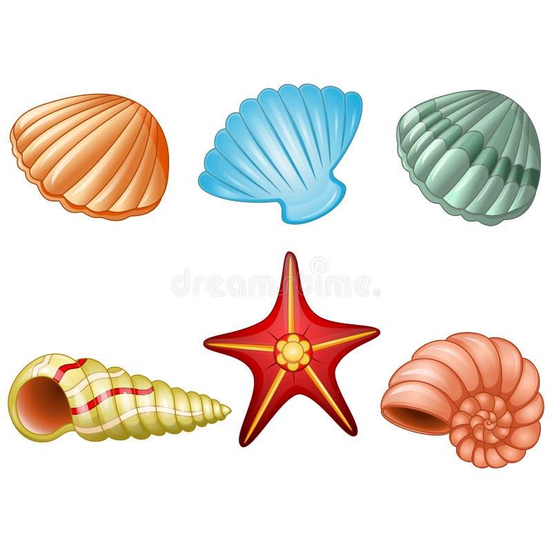 Shelles del mar y estrella de mar ilustración del vector