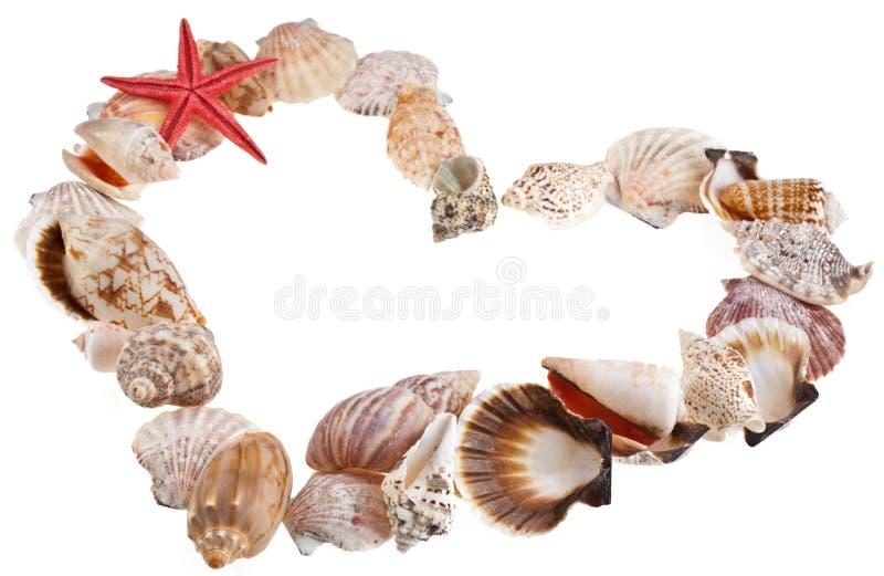 Shelles en una dimensión de una variable del corazón de la tarjeta del día de San Valentín foto de archivo