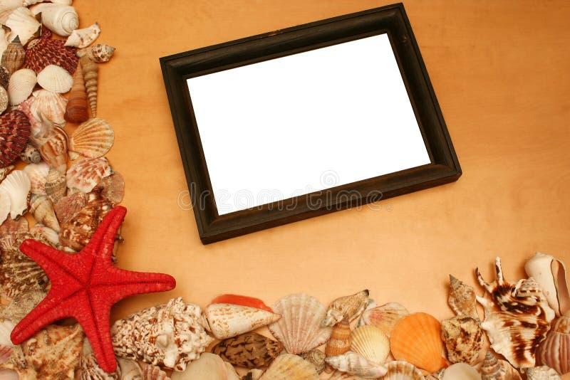 Shelles y marco en blanco foto de archivo