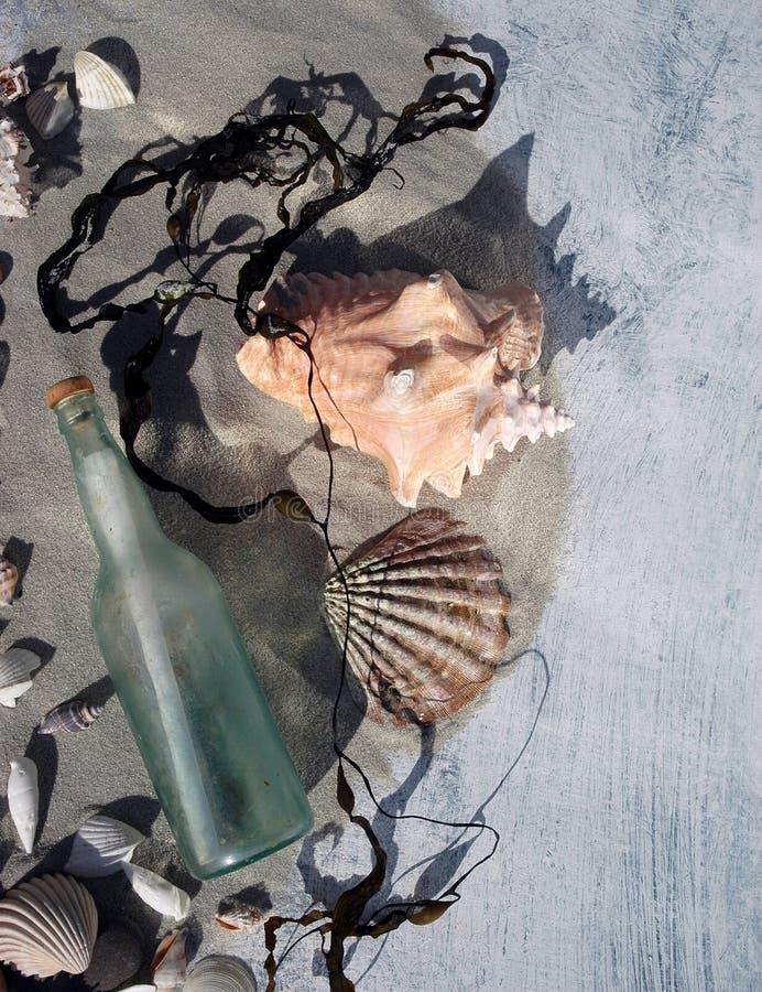 Shelles y mensaje del mar fotos de archivo libres de regalías