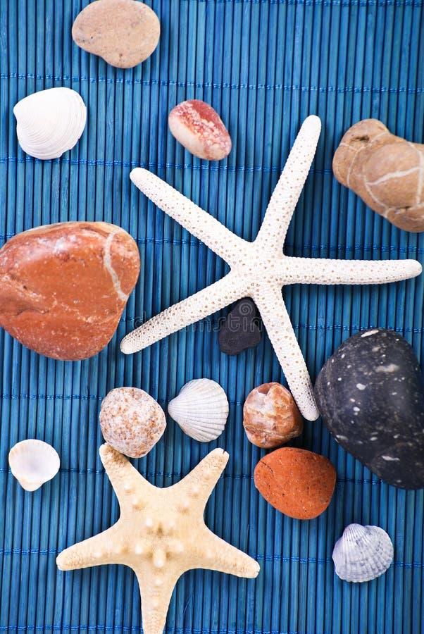 Shelles y piedras imagen de archivo