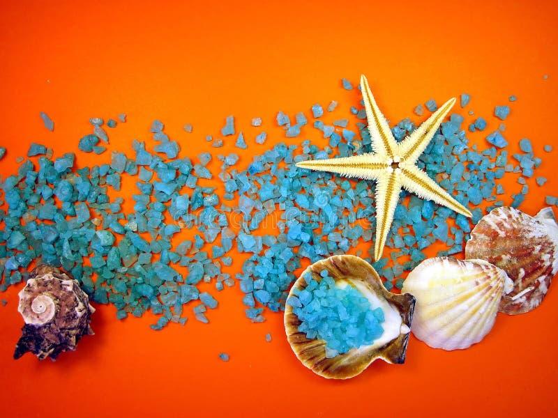 Shelles y sal de baño foto de archivo