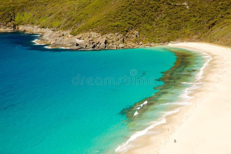 Shelley Beach royaltyfria bilder