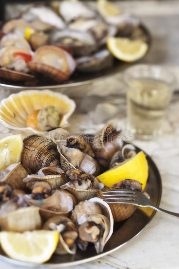 Download Shellfish stock image. Image of freshness, eating, gourmet - 12347383