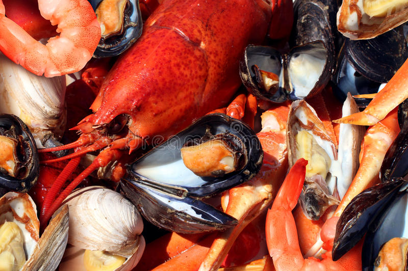 Download Shellfish stock photo. Image of cooked, platter, dinner - 57778140