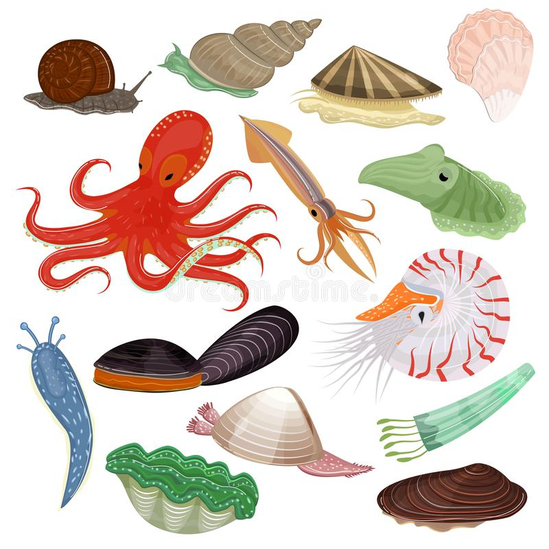 Free Shellfish Vector Marine Animal Octopus Molluscs Tentacle And Animalistic Character Octopi Oyster Snail In Sea Stock Photos - 128387203