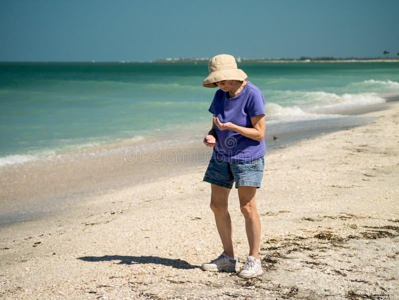 Download Shelling On Captiva And Sanibel Islands Florida Stock Image - Image: 24478303